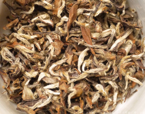 白毛猴東方美人超級茶葉